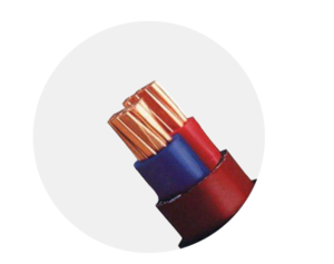 新利体育网页版 交联聚烯烃绝缘电线和电缆